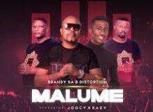 Download Mp3 : BrandySA & Distortion – Malume Ft. Joocy & Eazy Mp3 download