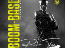 Download Mp3 : Pro-Tee – Boom-Base Vol 7 Album (The King of Bass) zip mp3 Download